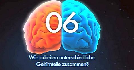 10 ungelöste Geheimnisse über dein Gehirn