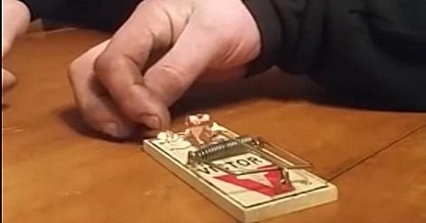 Jenga spielen mit einer Mausefalle