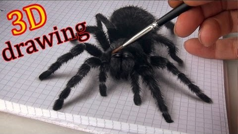 3D Zeichnung – Spinne