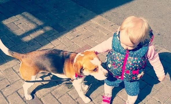 Baby geht mit Hund Gassi