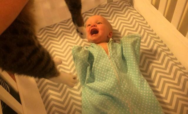 Baby liebt seine Katze!