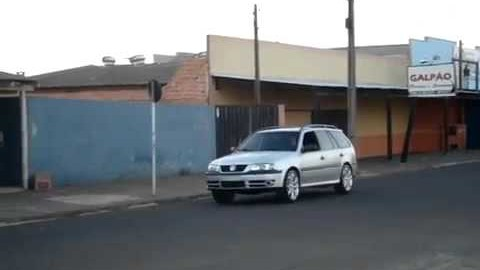 Hund fährt Auto!