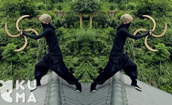 The Art of Ninja