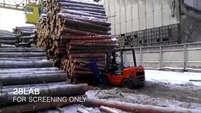Mit Gabelstapler Holzstämme verladen