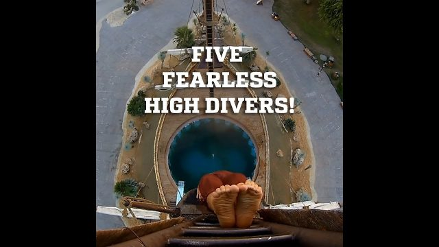 Five Fearless High Divers!