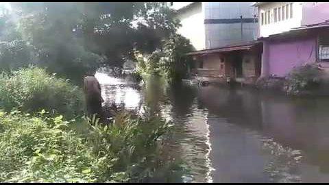 Bootfahren in Bangladesch