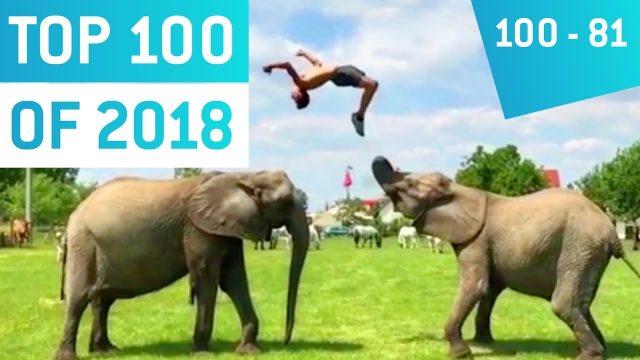 Top 100 Viral Videos 2018